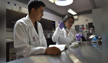 Estudiantes del Tecnológico de Morelia, buscan crear una vacuna mas eficiente contra el virus de Newcastle