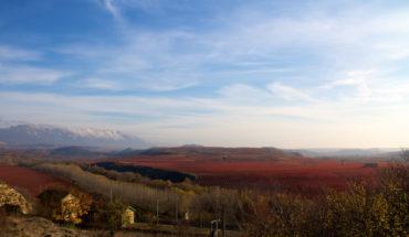 Las nuevas fronteras del turismo español. Viñedos cerca de La Estrella, La Rioja (España). Foto: Robert McIntosh (CC BY-NC 2.0).