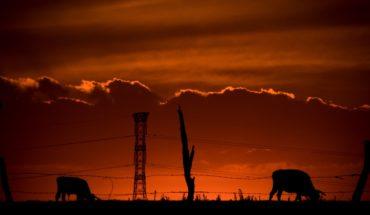 Piden modificaciones al campo mexicano, por cambio climático