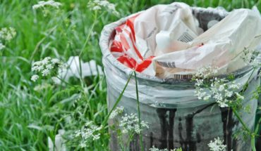 How to live without plastic: seven tips to start a sustainable life