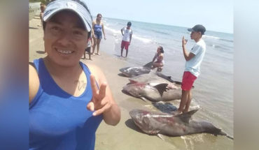 In Veracruz, a woman poses with four dead sharks and presumed it on social networks