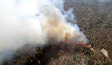 La Primavera forest registers two fires within a week