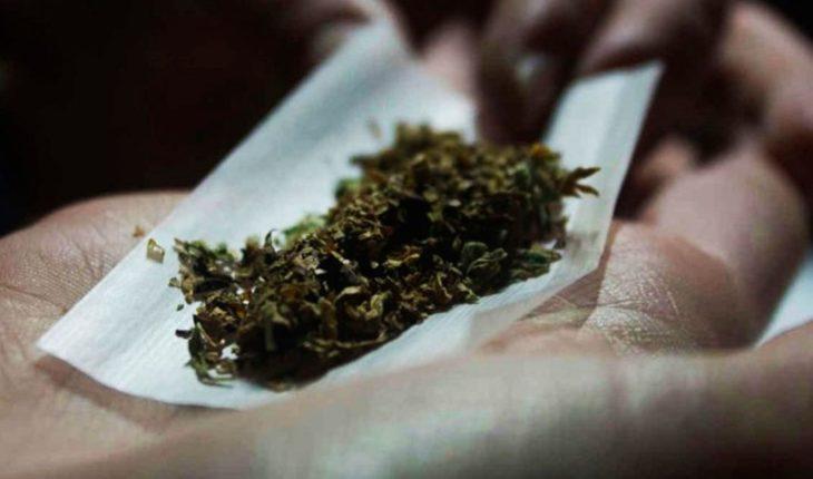 La marihuana, vista desde la ciencia