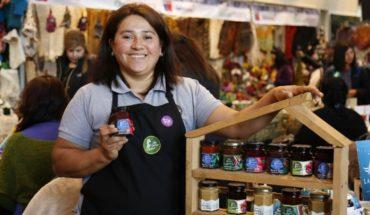 Producers of copao, amaranth, native potatoes, murta and Jerusalem artichoke will participate in Nam Santiago