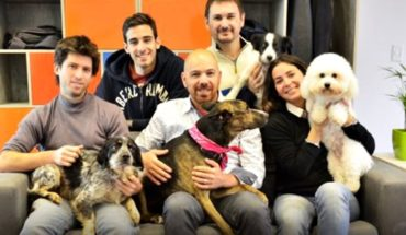 Venezuela: Campaign so dogs of emigrants gather with their owners