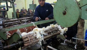 """Cámara de Comercio de Santiago: """"El hecho de tener una mayor flexibilidad va a generar más trabajo"""""""