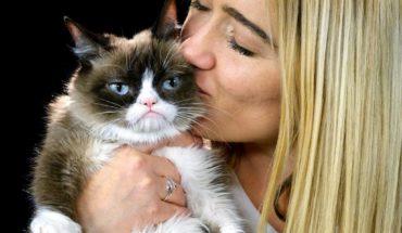 """Fallece """"Grumpy Cat"""" la celebridad del internet"""