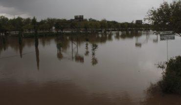 Mina contamina río en Zacatecas usado en sembradíos y consumo humano