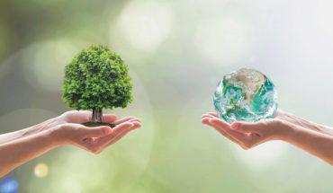 Según un estudio, dejar de tener hijos contribuye con el cuidado al medio ambiente