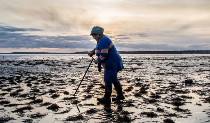 Artisanal fishing women make intense struggle to visualize their contribution in the sector