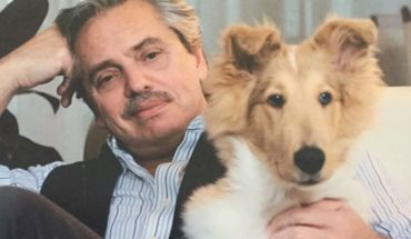 """Dylan, the """"national and popular collie"""" that accompanies Alberto Fernandez"""
