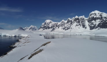 Melting glaciers helped the development of important microalgae populations in two Antarctic bays
