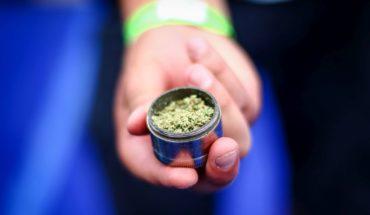 """Colegio Médico rechaza recetar marihuana por """"falta de respaldo científico"""""""