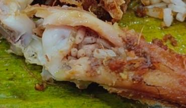 Descubre decenas de gusanos cuando ya había comido la mitad de su pollo frito