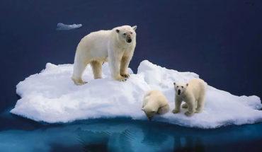 Groenlandia está sufriendo el peor deshielo en 30 años