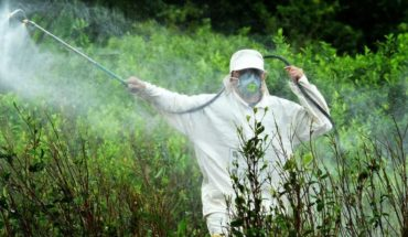 Another setback for Monsanto from Bayer: Chubut prohibits glyphosate