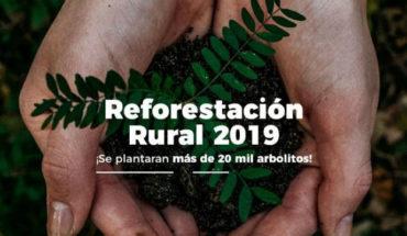 Prepara Ayuntamiento reforestación masiva en zonas rurales de Morelia