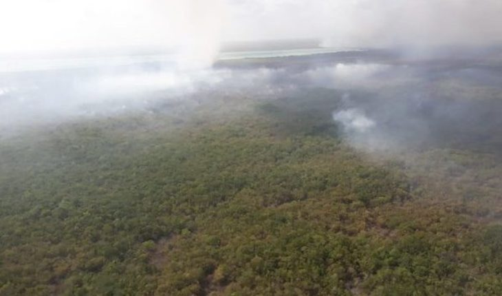 Conafor cuts complicate fire control in Sian Ka'an: State PC