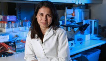 New respiratory virus test validates its effectiveness in patient samples