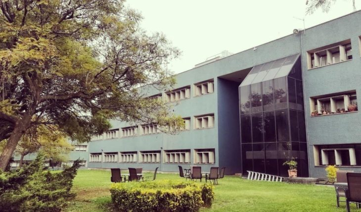 Offers IIS-UNAM in institutional communication and political campaign design