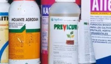 Pesticide poisonings, still uncontrolled in Michoacán