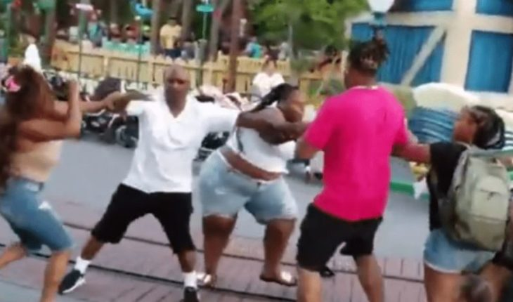[VIDEO] Family starred in brutal fight at Disney park