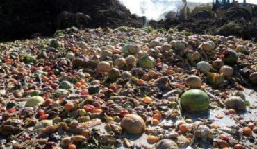 Grupo de expertos de la ONU llama a controlar la agricultura y el despilfarro de alimentos para frenar el Cambio Climático