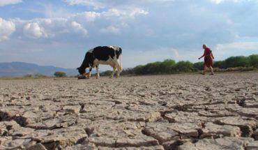 Qué hacer con la escasez de agua en el sector agrícola: soluciones para hoy