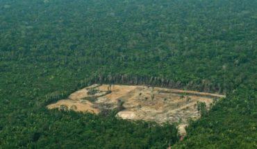 Compared to last year, Amazonder deforestation increased by 278%