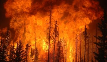 Emergency management as an expression of centralism