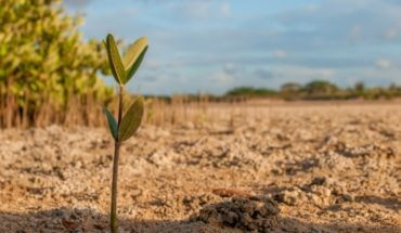 How water scarcity would be affecting our country's agriculture