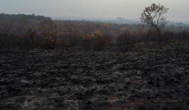 Respiratory diseases begin to occur due to fires in the Amazon