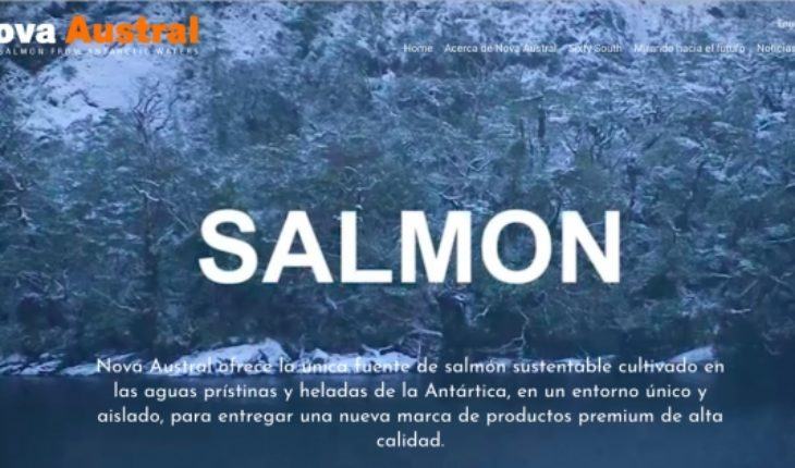 Salmon Leaks II: Manipulations and deceptions throughout the Nova Austral salmon production chain