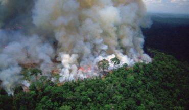 The Amazon smoke reached north of Mendoza