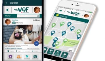 The innovative app that generates community around the adoption and responsible tenure of pets