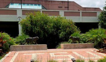 Imagen de la Universidad del Sur de Texas en Houston, sede del tercer debate entre los candidatos del Partido de Demócrata. Foto: Broadmoor (trabajo propio) (Wikimedia Commons / CC BY-SA 4.0)