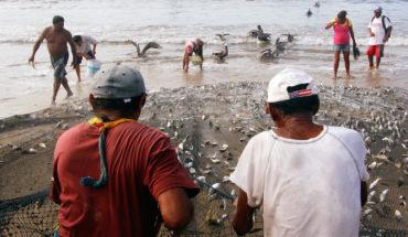 Pescadores reclaman ante recorte de 52% en apoyos