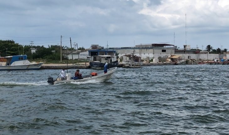 Conflict over sea cucumber hits the village of San Felipe