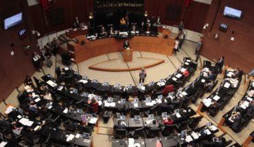 El Senado aprueba prohibir la condonación de impuestos