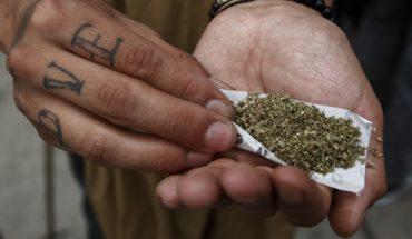 Las claves de la propuesta de Morena para regular la mariguana