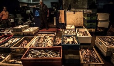 For the third year in a row, Chilean Hake Day will be celebrated