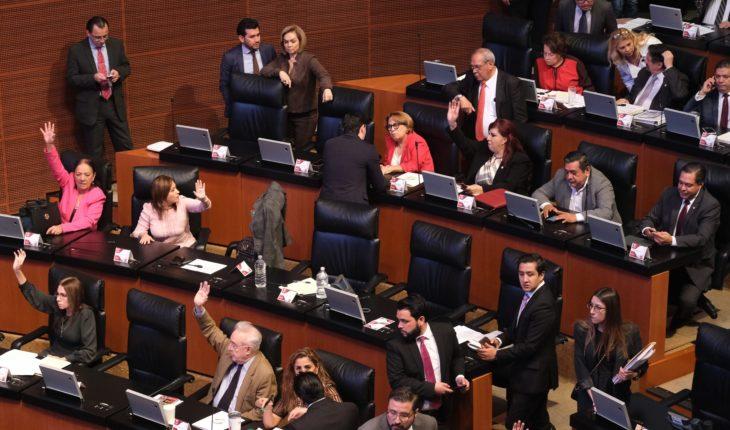Senate fails to agree to elect CNDH incumbent