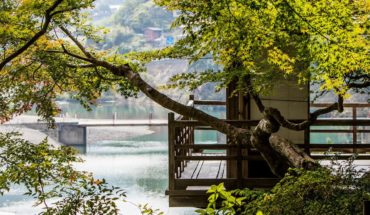 ¡Prepárate para conocer Japón! Aerolínea regalará 50.000 pasajes