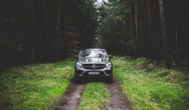 Mercedes Benz models failed in seats and belts