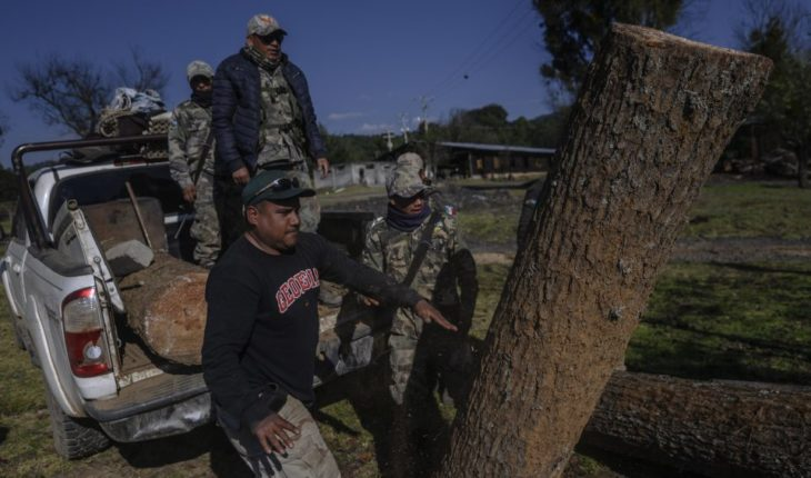 The ecological rebellion of the people of Cherán, Michoacán