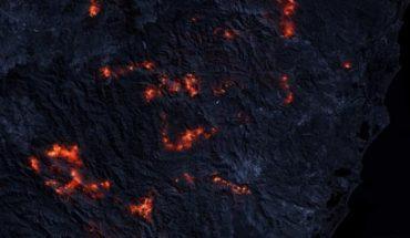 Forest fires: Climate change and deforestation increase global risk