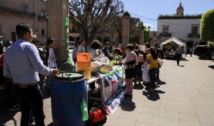 Morelia City Council joins World Environment Day