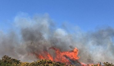 Onemi reported six active wildfires, 18 controlled and 29 extinct nationwide