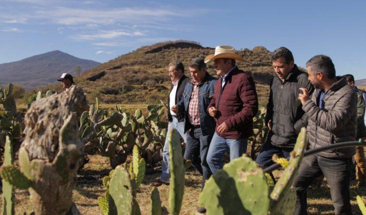 Raúl Morón consolidates works in rural Morelia
