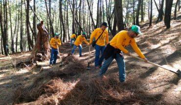 Ayuntamiento de Morelia preparó medidas preventivas para combatir los incendios forestales